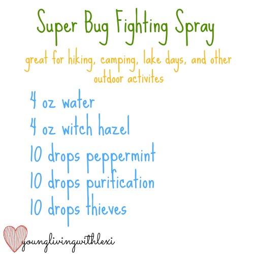 bug fighting spray