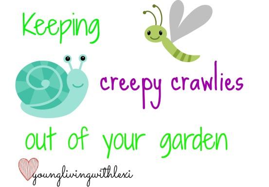 creepycrawlies