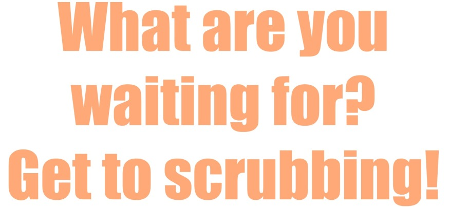 get to scrubbing